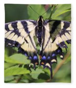 Common Yellow Swallowtail Fleece Blanket