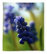 Compact Grape-hyacinth 2 Fleece Blanket