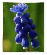 Compact Grape-hyacinth Fleece Blanket