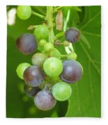 Concord Grapes On The Vine Fleece Blanket