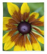 Coneflower - New England Wild Flower Fleece Blanket