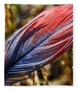 Congo African Grey Feather Fleece Blanket