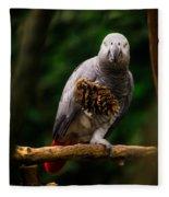 Congo African Grey Parrot Fleece Blanket
