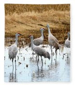 Congregating Sandhill Cranes Fleece Blanket
