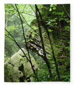 Conkle's Hollow Stone Arch Fleece Blanket