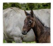 Connemara Foal Fleece Blanket