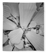 Conservatory Nature In Black And White 1 Fleece Blanket