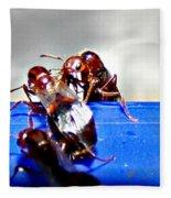 Consider The Ants 2 Of 3 Fleece Blanket