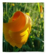 Contemporary Orange Poppy Flower Unfolding In Sunlight 10 Baslee Troutman Fleece Blanket