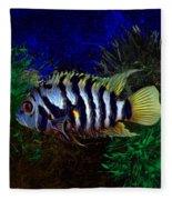 Convict Cichlid Fish Fleece Blanket