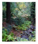 Cool Creek On Mt Tamalpais Fleece Blanket