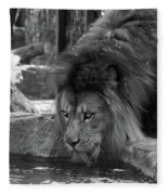 Cool Drink Of Water  Black And White  T O C Fleece Blanket