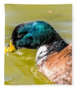 Cool Off The Bill Fleece Blanket