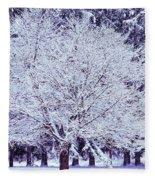 Cool Sunset Essence Of Winter Fleece Blanket