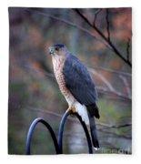 Coopers Hawk In Autumn Fleece Blanket