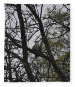 Cooper's Hawk Perched In Tree Fleece Blanket