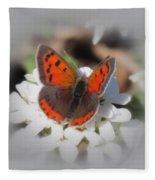 Copper Glow - Butterfly Fleece Blanket