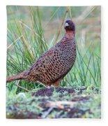 Copper Pheasant Fleece Blanket