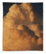 Coppermouth Fleece Blanket