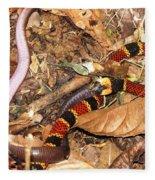 Coral Snake Snack Fleece Blanket