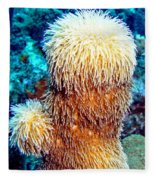 Corky Sea Finger Coral - The Muppet Of The Deep Fleece Blanket