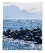 Cormorants At The Cobb - Lyme Regis Fleece Blanket