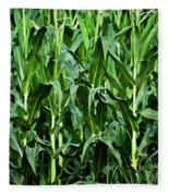 Corn Field's First Row Fleece Blanket