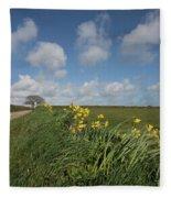 Cornish Daffodil Hedge Fleece Blanket