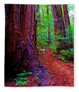 Cosmic Redwood Trail On Mt Tamalpais Fleece Blanket