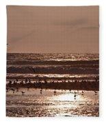 Costa Rica 040 Fleece Blanket