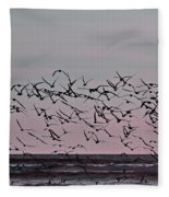 Costa Rica 045 Fleece Blanket