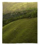 Costa Rica Pasture Fleece Blanket