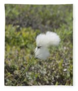 Cotton Grass -eriophorum Virginicum- Fleece Blanket