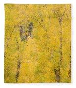 Cottonwood Autumn Colors Fleece Blanket