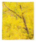 Cottonwood Colors  Fleece Blanket