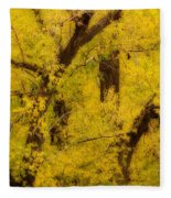Cottonwood Fall Foliage Colors Abstract Fleece Blanket