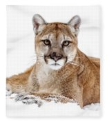 Cougar On White Fleece Blanket