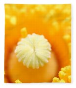 Coulter's Poppy 5 Fleece Blanket