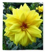 Country Dahlias Fleece Blanket