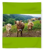 Cow Gazing  Fleece Blanket
