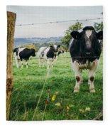 Cow Herd Fleece Blanket