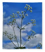 Cow Parsley Blossoms Fleece Blanket
