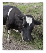 Cow Tow Fleece Blanket