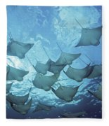 Cownose Rays Fleece Blanket