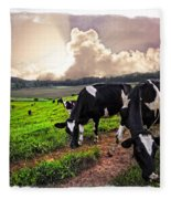 Cows At Sunset Bordered Fleece Blanket