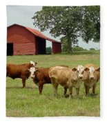Cows8954 Fleece Blanket