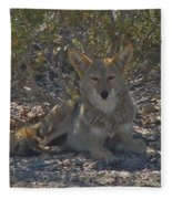 Coyote 2 Fleece Blanket