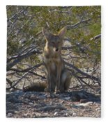 Coyote 3 Fleece Blanket