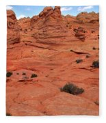 Coyote Buttes Pink Landscape Fleece Blanket