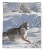 Coyote On The Move Fleece Blanket